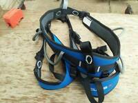 Safty harness (climbing+tree work)