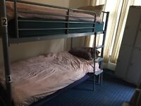 Professional bunk beds for sale
