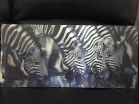 Holographic frame zebra