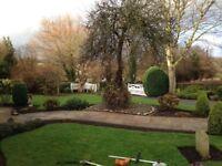 DSB gardening services