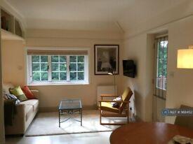 Studio flat in King's Lynn, King's Lynn, PE32 (#968452)