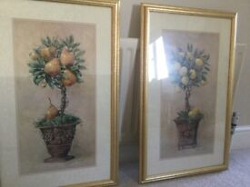 Pair of Quality Gold Framed Pictures