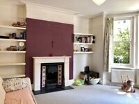Beautiful spacious contemporary 2 bed garden flat near Oval / Stockwell with big communal garden.