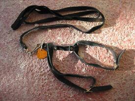 CAT Harness & leash (medium)