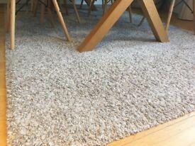 Ikea rug size 160x240