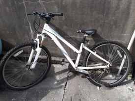 'Giant Boulder' bike