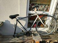 Batavus Dutch Bike Frame