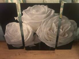 Large 3 piece white rose canvas