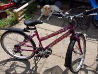 Girls 24 inch bike. Falcon Fire Fox 18 speed