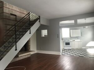 2 LEVEL!! 1.5 BR WITH STONE FIREPLACE