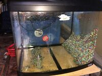 Superfish Panorma 60 Aquarium Fish Tank 55 Litres OFFERS OR TRADE