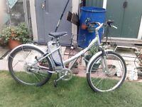 meerkat electric bike 24v