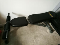 BodyMax Performance Fitness Bench