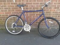 Raleigh Frontier Light Weight Large Mountain Bike Mint Condition