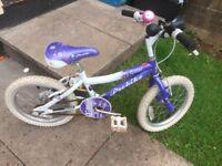 "Kids mountain bike 16"" wheels"