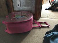 Disney Princess Cabin Case