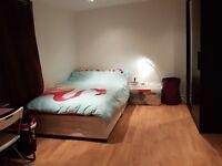 Spacious en-suite room in Turnpike Lane