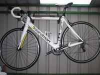 Carbon Fibre Road Bike Bicycle Racer