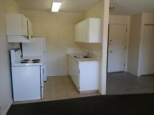 Bright 1 Bdrm Bsmt Suite Avail Today!  $715.00/mth