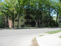 Renovated Two Bedroom Suites Available!