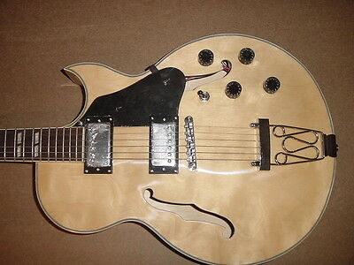 NEW 6 STRING HOLLOW BODY ELECTRIC GUITAR NATURAL on Rummage
