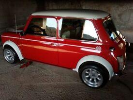 Rover Mini Cooper 1.3i LHD project car