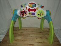 Baby Electronic Play Arch