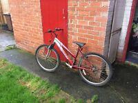 Unisex red bike