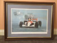 """""""Senna in the rain"""""""