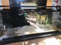 190l aqua one black aquarium 6 months old **PRICE DROP**