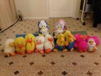Selection of teddy bears.