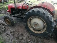 Massey ferguson 35x 35 agricultural tractor june 1963 diff lock