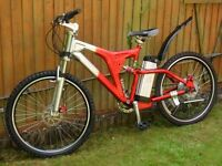 electric bike with twist throttle