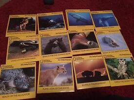 Collection national geographic nature dvds