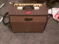 Brand new guiatar amp