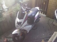 Dafier skiv 50cc Moped Scooter