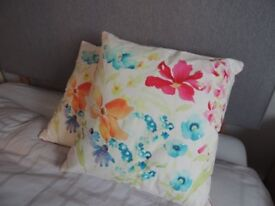 2 Next scatter cushions.