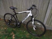 Carerra Mountain Bike - Mint Condition