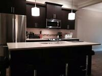 Brand new townhouse for rent in Chilliwack