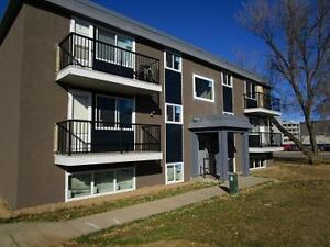 1 Bedroom Suites in a Great Location!