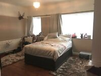 SPACIOUS DOUBLE ROOM IN BALHAM