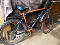 a73a071d3b8 Carrera mountain bike in Staffordshire | Bikes, & Bicycles for Sale ...