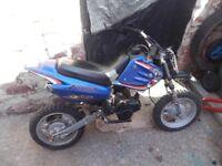 50cc kids midi moto never seen one like it good solid bike