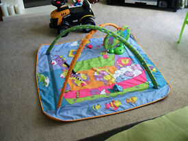 Babies play mat. You can hang toys from the arches.