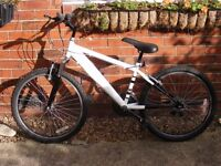 24'' wheel mountain bike 15 gears approx age 9+ tidy bike