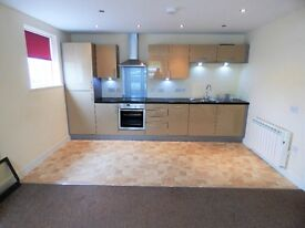 Beautiful modern two double bedroom ground floor flat in Halton, near Lancaster. High gloss kitchen