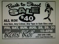 back to school koi sale