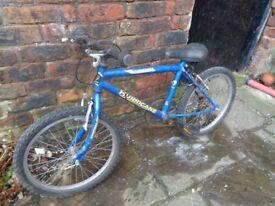 Sentinel hurricane kids bike