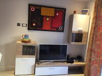 Living Room TV Stand and Storing