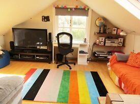 1 bedroom flat in dulwich!